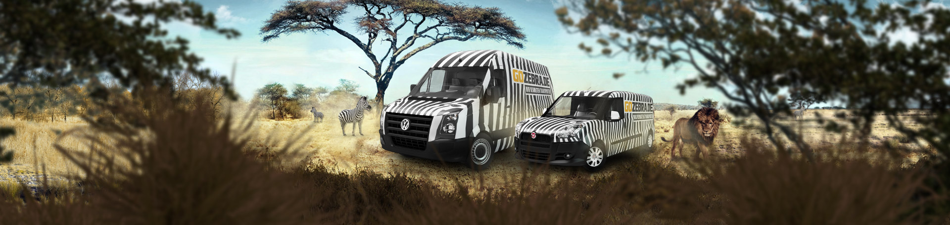 gozebra de wir vermieten transporter. Black Bedroom Furniture Sets. Home Design Ideas